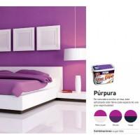 titan-una-capa-color-purpura-25l